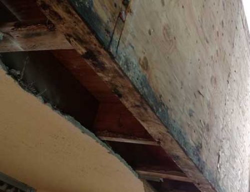 How to Check the Presence of Rotten Wood in Your Home