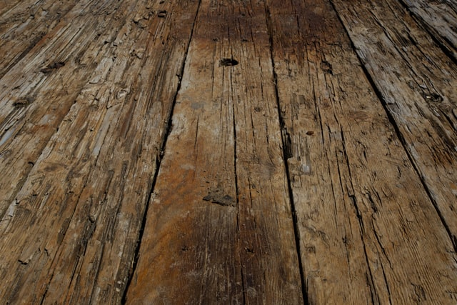 rotting wood